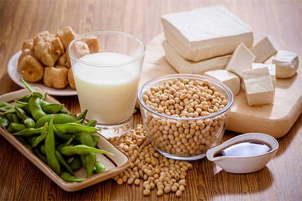protein có tác dụng gì